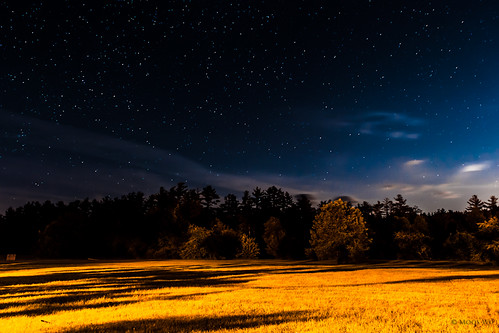 blue light shadow sky orange cloud tree grass yellow night contrast star newhampshire 365 catchycolor project365 365days nikond700 2470mm28g sargentcamp