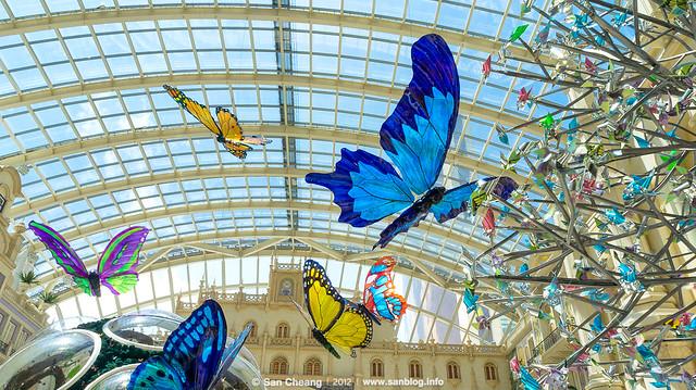 美高梅蝴蝶生態展覽