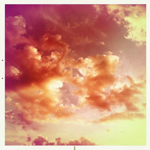 noflash hipstamatic alfredinfraredfilm melodielens