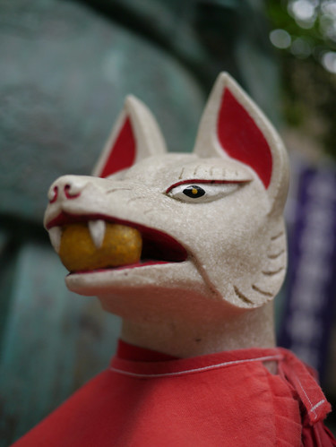 Fox's image@Seimei Shinto Shrine.