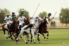 stick and ball games(1.0), animal sports(1.0), equestrian sport(1.0), sports(1.0), stick and ball sports(1.0), polo(1.0), team sport(1.0), ball game(1.0),