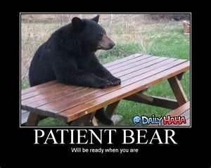 Patient Bear.