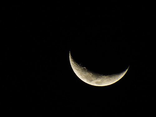 無料写真素材, 自然風景, 空, 夜空, 月
