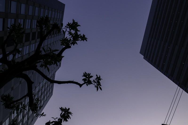 2012-05-28の空