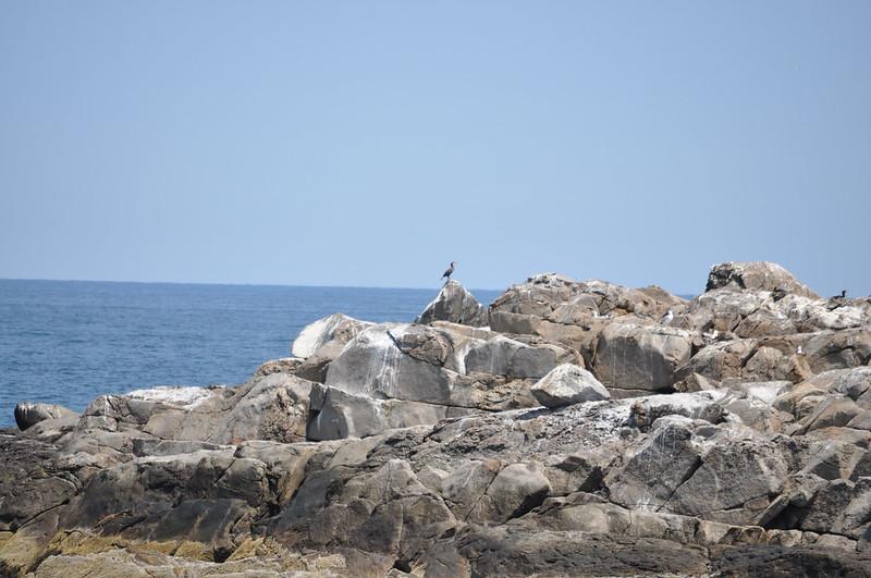 2012-05-26 to 28 - Bar Harbor 320