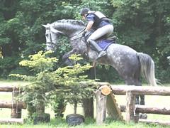 paardensport evenement