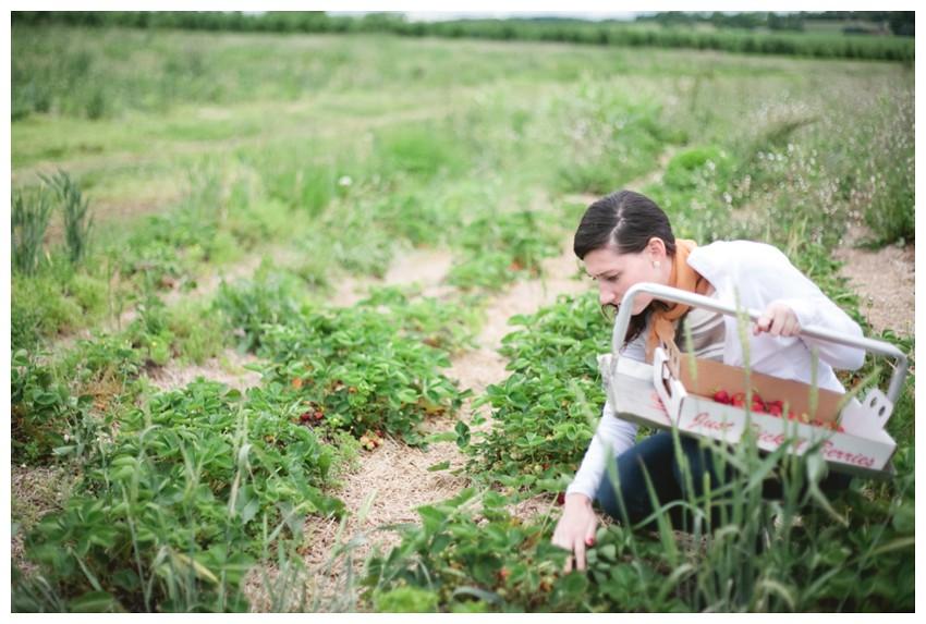 strawberries_007