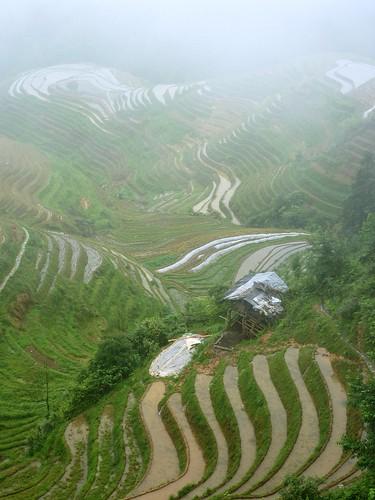C-Guangxi-Pingan-Terrasse des 7 etoiles (34)