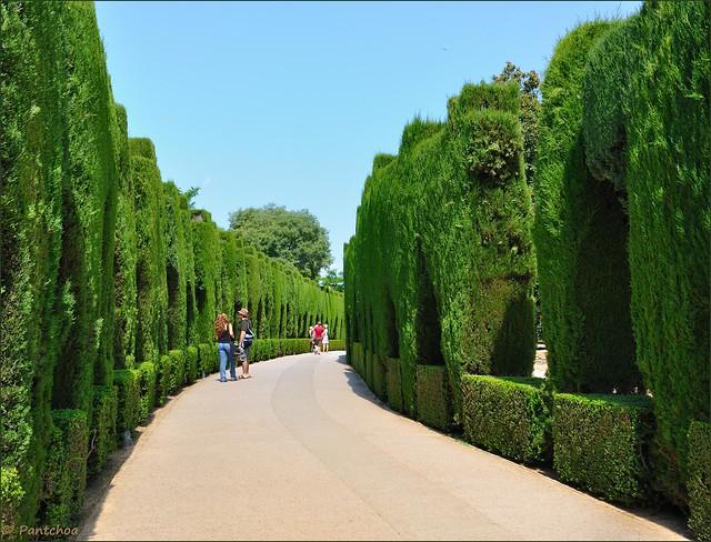 Granada jardines del generalife walk in the path of for Jardines generalife