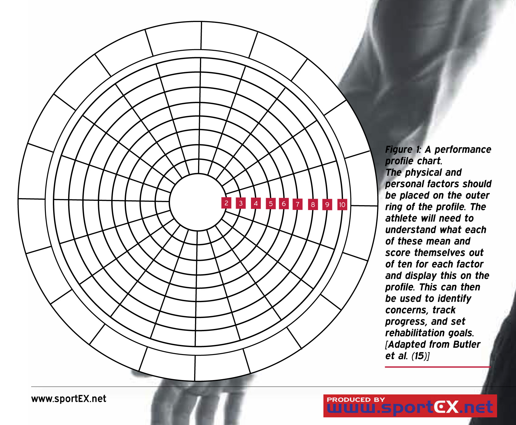 Workplace Learning and Development Pertaining To Blank Performance Profile Wheel Template