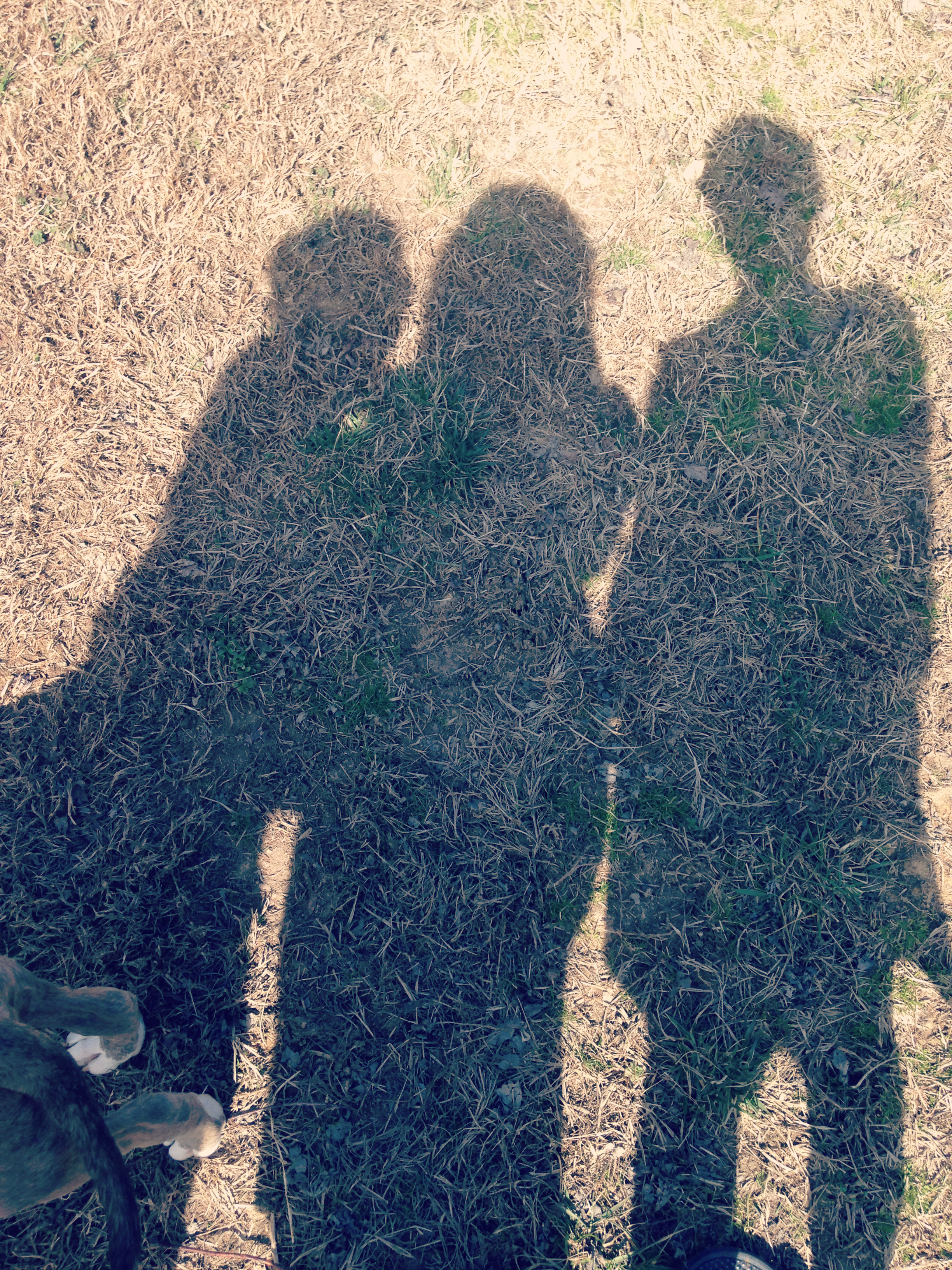 Blog_2014 929
