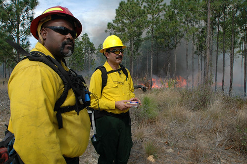 Fire Management Officer Mike Drayton, left, escorts Driss Misbah, a regional forester in northern Morocco during a prescribe fire demonstration on the Ocala National Forest. Photo Credit: Susan Blake, Public Affairs Specialist, National Forests in Florida