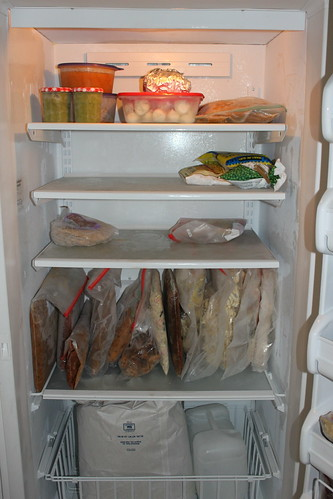 Daja's Big Freezer--THREE MONTHS