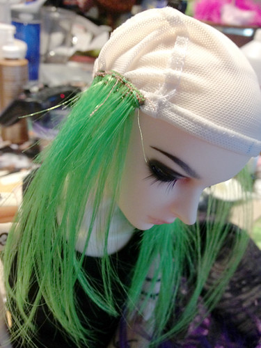 wig progress 7