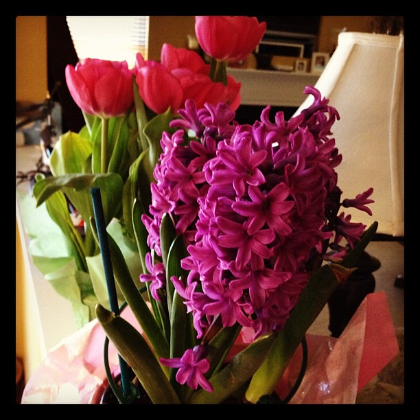 Pretty Easter flowers!
