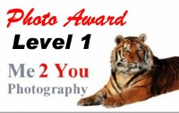 Level 1 Photo Award
