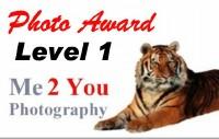 Level 1 Photo Award