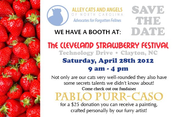 The Cleveland Strawberry Festival in Clayton, NC