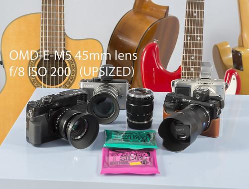 Olympus OM-D E-M5 45mm lens - ISO-200 - upsized