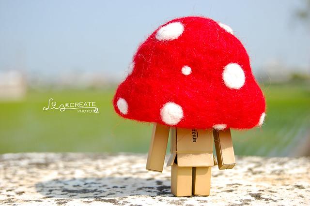 蘑菇楞楞 01