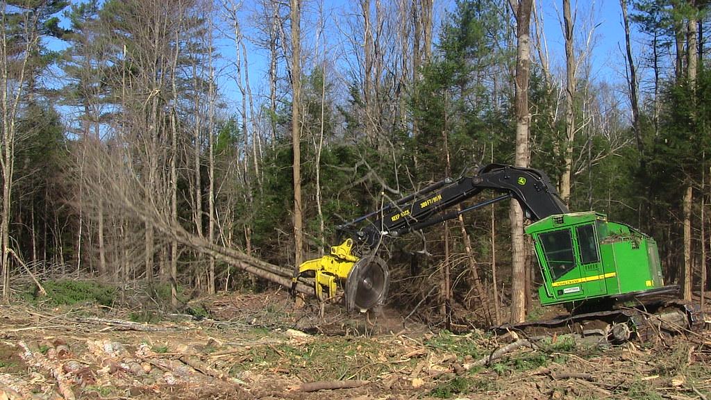 Logging Operation (Cat 517 Tracked Skidder & More) Updated