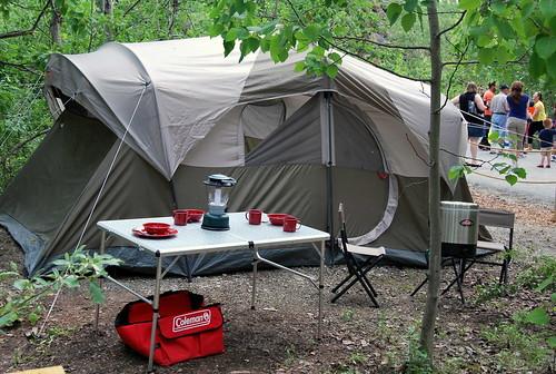 Dino - camp