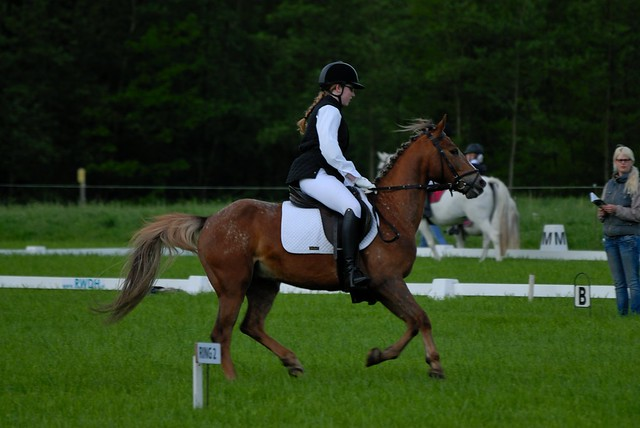 2012-05-12 Concours Winterswijk - Zaterdag