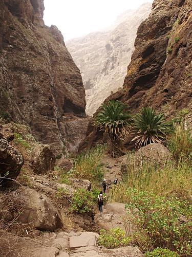 Hiking Masca Barranco, Tenerife