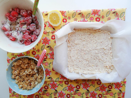 strawberry rhubarb coconut crumb bars