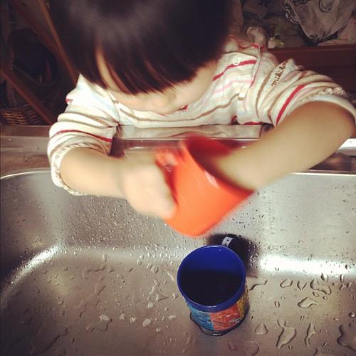 コップ洗い中。