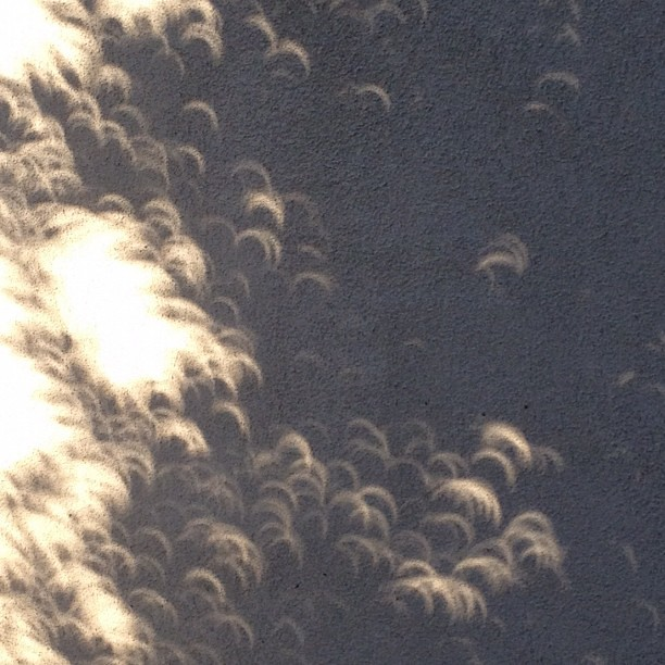 Eclipse shadows are blowing my mind!