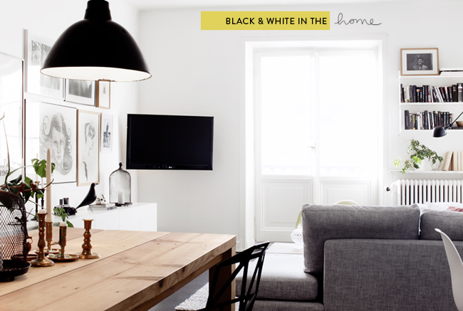 Glass and Sable black and white interior shelter home decor