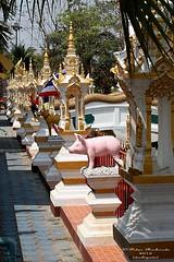 IMG_0617 Temples at San Pa Tong, วัดทึ่สันป่าตอง