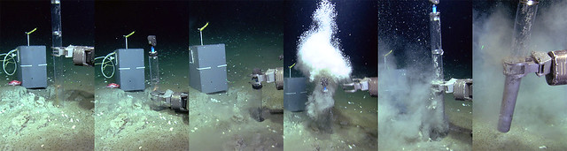 While sampling sediment in Bubbly Gulch, our 1 m long push core released a cloud of gas bubbles, 3 June 2012. (Depth: 1265m)  Credit: CSSF/NEPTUNE Canada.