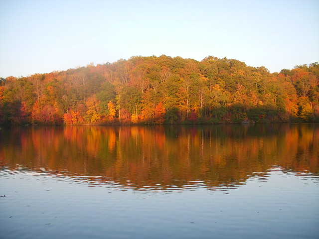 Fall Colors at Holliday Lake State Park