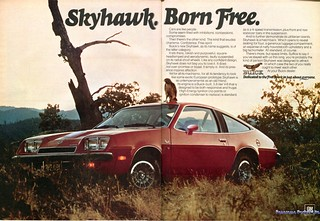 1974 Buick Skyhawk Advertising Road & Track November 1974
