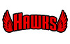 BlackHawks Text Logo
