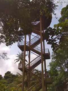 Pulau Ubin getaway -12