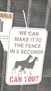 we can make it to the fence in 5 minutes CAN YOU?