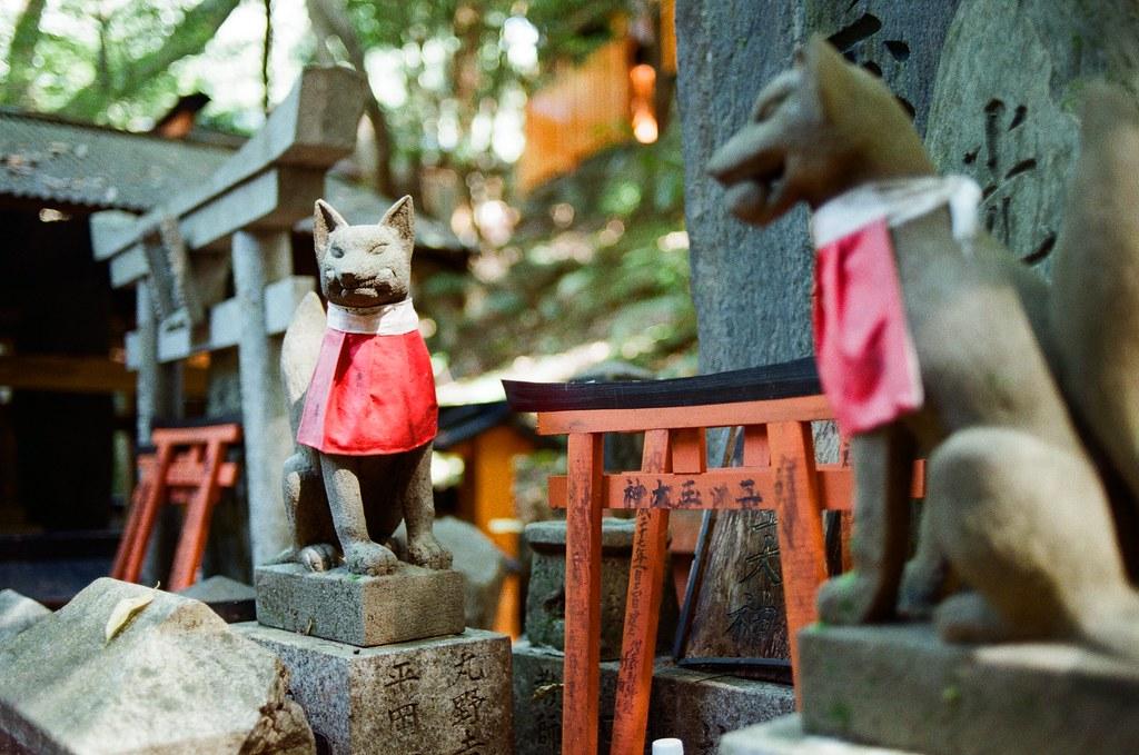 伏見稻荷 京都 Kyoto, Japan / Kodak ColorPlus / Nikon FM2 開始挑戰走稻荷山,還好一路上都包圍在樹林裡。  這應該是祖先住的地方吧,但吸引我注意的是稻荷神狐狸的雕像,這裡有很多!  Nikon FM2 Nikon AI AF Nikkor 35mm F/2D Kodak ColorPlus ISO200 0993-0012 2015/09/29 Photo by Toomore