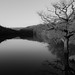 lliw reservoir by absynth100
