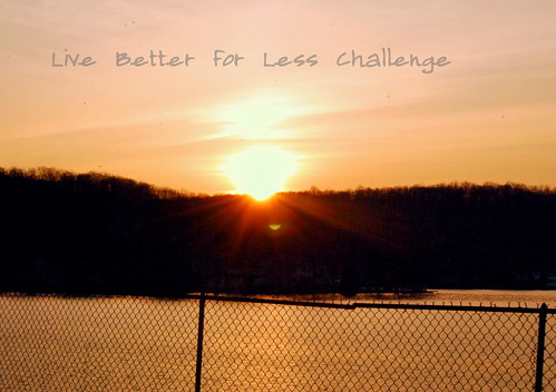 Live Better for Less Challenge
