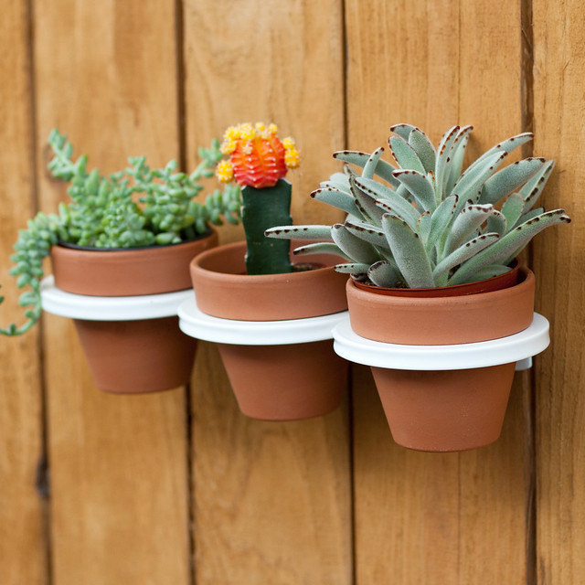 Three-ring mountable planter - White