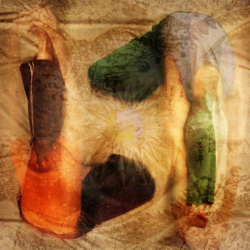 Inspiring Asanas. In Cosmic Rhythms of Yin-Yang