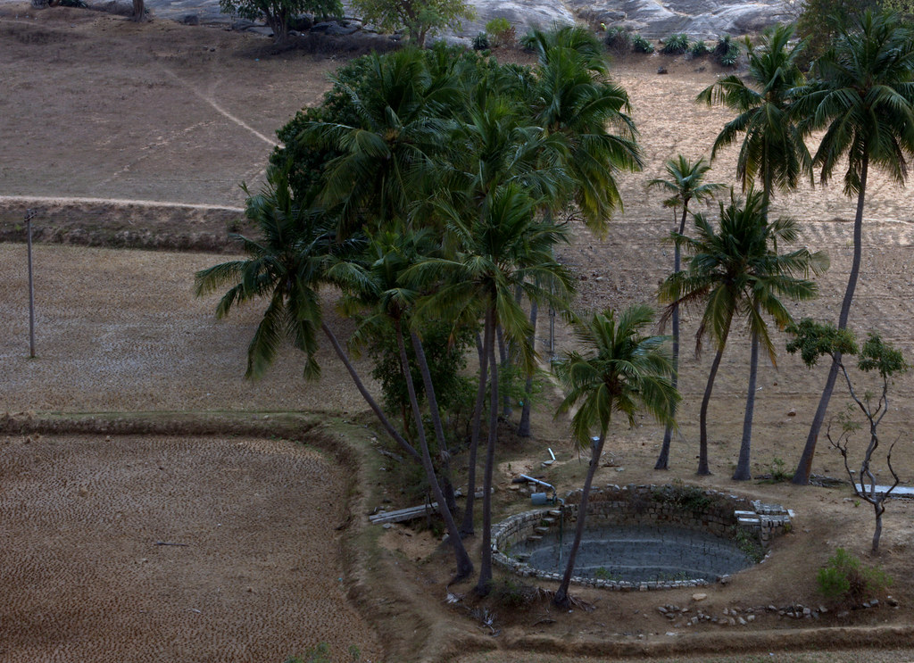 Image result for நார்த்தாமலை
