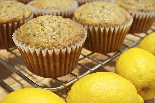 glazed lemon coconut chia seed muffins