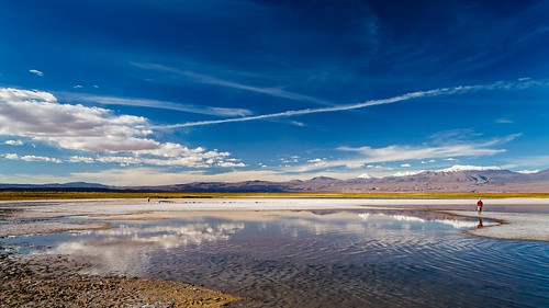 Atacama-4799