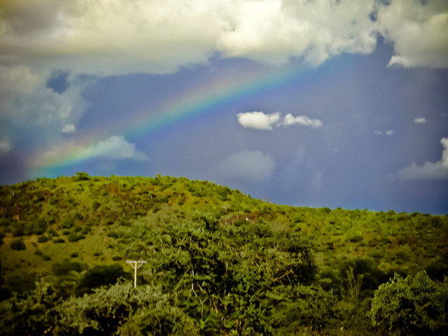 Ze East African Rainbow