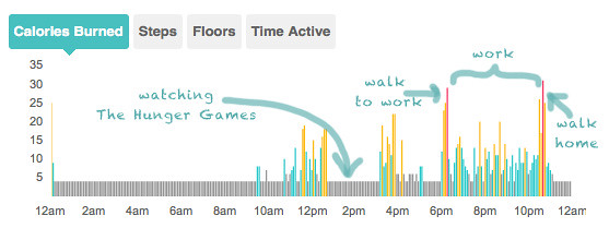 fitbitmay112012
