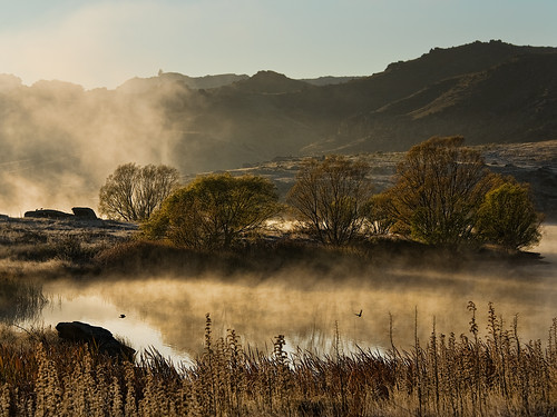 morning misty bravo frost dam central alexandra nz otago butchers